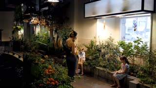 The Audubon Butterfly Garden and Insectarium in New Orleans, Louisiana, United States of America. American family and children, people and kids, tourists, visitors, butterflies flying in greenhouse