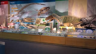 The MDWFP Museum of Natural Science in Jackson, Mississippi, USA. People, families, kids near dinosaurs display