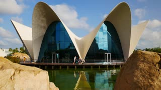 Tourists Visiting Oceanografic City Of Arts And Sciences Valencia