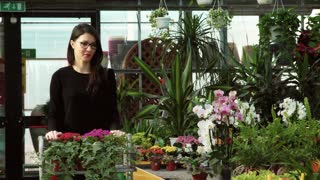 Woman as customer shopping in florist shop, buying flowers for hobby and gardening. Young person walking in flower shop, portrait of client smiling at camera. Happy girl in greenhouse
