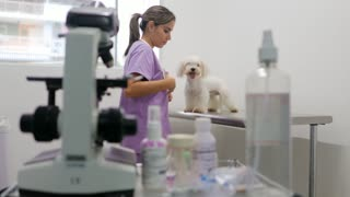 Woman Working As Doctor In Clinic With White Dog