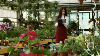 Young people working as sales manager in floral shop, selling flowers and plants. Portrait of woman at work, smiling in flower store. Worker girl as small business owner in greenhouse
