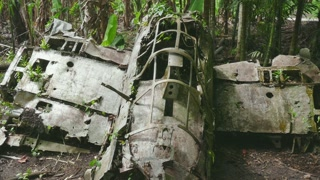 Zero, Japanese fighter airplane in jungle. Battle of Peleliu, Palau (Operation Stalemate II) fought between the United States and the Empire of Japan in the Pacific Theater of World War II in 1944