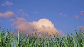3d animation grass and time lapse clouds