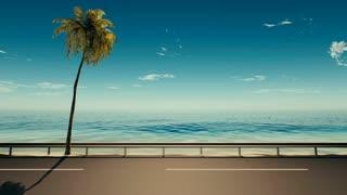 3d,Asphalt road near the sea with a palm tree