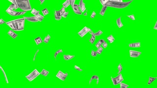 Flying banknotes of dollars. Isolated over green alpha