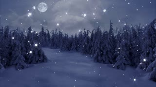 New Year,christmas,3d winter moon and snowflake