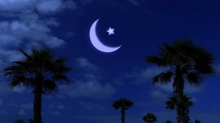 Ramadan kareem night and moonlight among the palm fronds