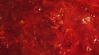Red tomato sauce stew