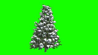 New Year and christmas tree on a green background, alph