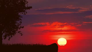 3 in 1 video! The man stand near the tree against the bright sunset. Real time capture. Wide angle