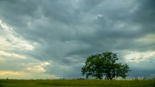 4 in 1 video! The thunderstorm sky by the field with green tree. Time lapse capture. Shot with Red Cinema Camera