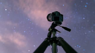 The camera shoot time lapse of the sky with stars above forest