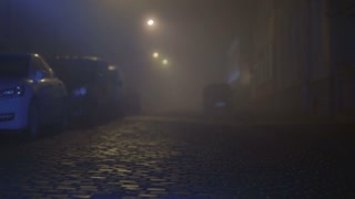 The man with a flashlight in his hand, inspecting cars on the street. Evening-night time, foggy weather, real time capture