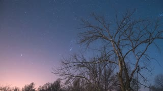 The tree against the background of the night sky with stars. Evening time. Time lapse, wide angle