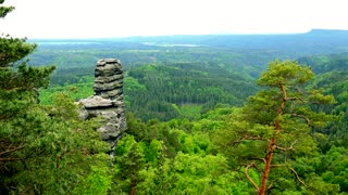 A vast and thick forest area with rocks - top view