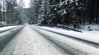 Road with blanket of snow along the forest