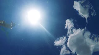 Man dives into the swimming pool - sun in the sky - slowmotion - shot from the bottom of the pool