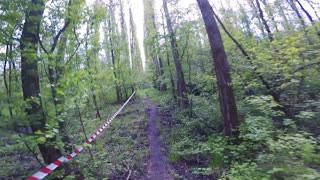 POV GoPro - a man runs through a forest at a race
