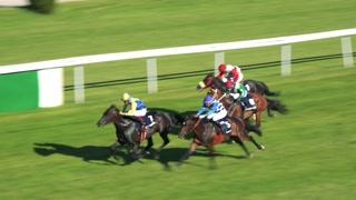 racecourse - riders on horses