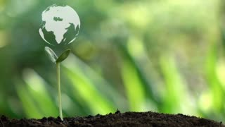 Planting a tree and the earth rotation hologram for save the earth and natural , clean ecology in natural.