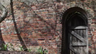 An old arched door in a brick wall with shadows of wind blown branches in St Albans, UK