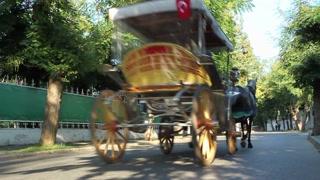 BIG ISLAND, TURKEY - SEPTEMBER, 2009: Traditional horse and cart carries tourists around  Büyük Ada (Big Island)