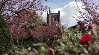 Man walks past St Peter's Church in St Albans, UK on sunny Spring day