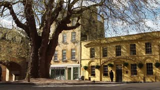 BATH, UK - 10 APRIL 2017: People pass by a large tree and old-fashioned Georgian pub in this quaint English city