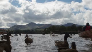 KESWICK, UK - 01 AUGUST 2017:  Tourists and birds enjoy Derwent Water in the English Lake District