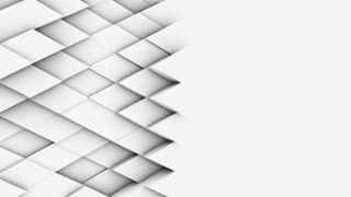 abstract polygonal geometric surface, light bright clean minimal polygonal grid pattern, random waving motion background canvas in pure wall architectural white