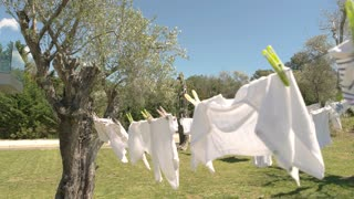 Clothes and wind. Lawn, trees and blue sky. Use high quality washing powder.