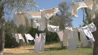 Clothes in the wind. Grass, trees and sky. New washing powder commercial.