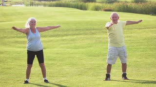 Elderly couple doing exercise. Man with woman on meadow. Gymnastics for health. Good day for a workout.