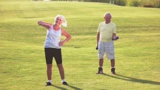 Senior couple does exercises. People on the grass. Strengthen body and improve health. Fitness is available to everyone.