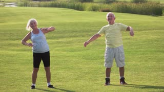 Senior couple doing exercise. Man and woman on meadow. Few sets of side bends. Do fitness and save health.