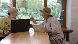 Senior women using laptop. Two ladies talking indoors. Online shopping tips.