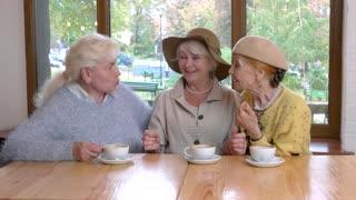Three senior ladies at table. Women near cafe window. Tasty coffee and interesting conversation.