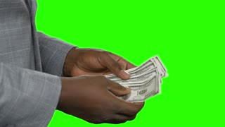 African american count cash. Black guy count dollars on green chromakey.