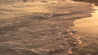 Beautiful evening sea coast. Golden sunset by the sea. Foamy water on a shore.