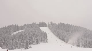Beautiful snow-covered mountain panorama. Evergreen spruces covered with snow. People skiing and snowboarding. Mountain descent.