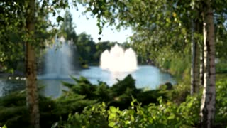 Blurred pond with fountains. Blurry summer nature background.