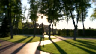 Blurred summer park. Nature and sunlight.