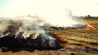 Burning field near the road. Hot Summer, No Rain.