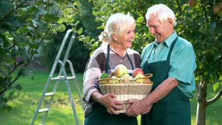 Cheerful couple and apple basket. Elderly woman kissing man. Always help each other.