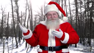 Cheerful Santa Claus, marketing. Santa laughing on forest background. Christmas business ideas.
