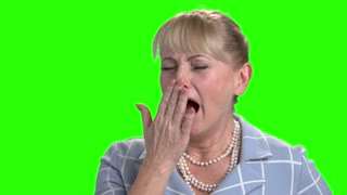Close up mature woman is yawning. Attractive female person is yawning on chroma key background. Exhausted and overworked woman.