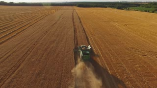 Combine, field and trees. Agriculture and technology.