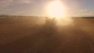Combine in cloud of dust. Sun is shining over field. Agricultural equipment in action. Gathering of crops at sunset.