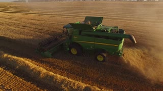 Combines and field, aerial view. Wheat field.